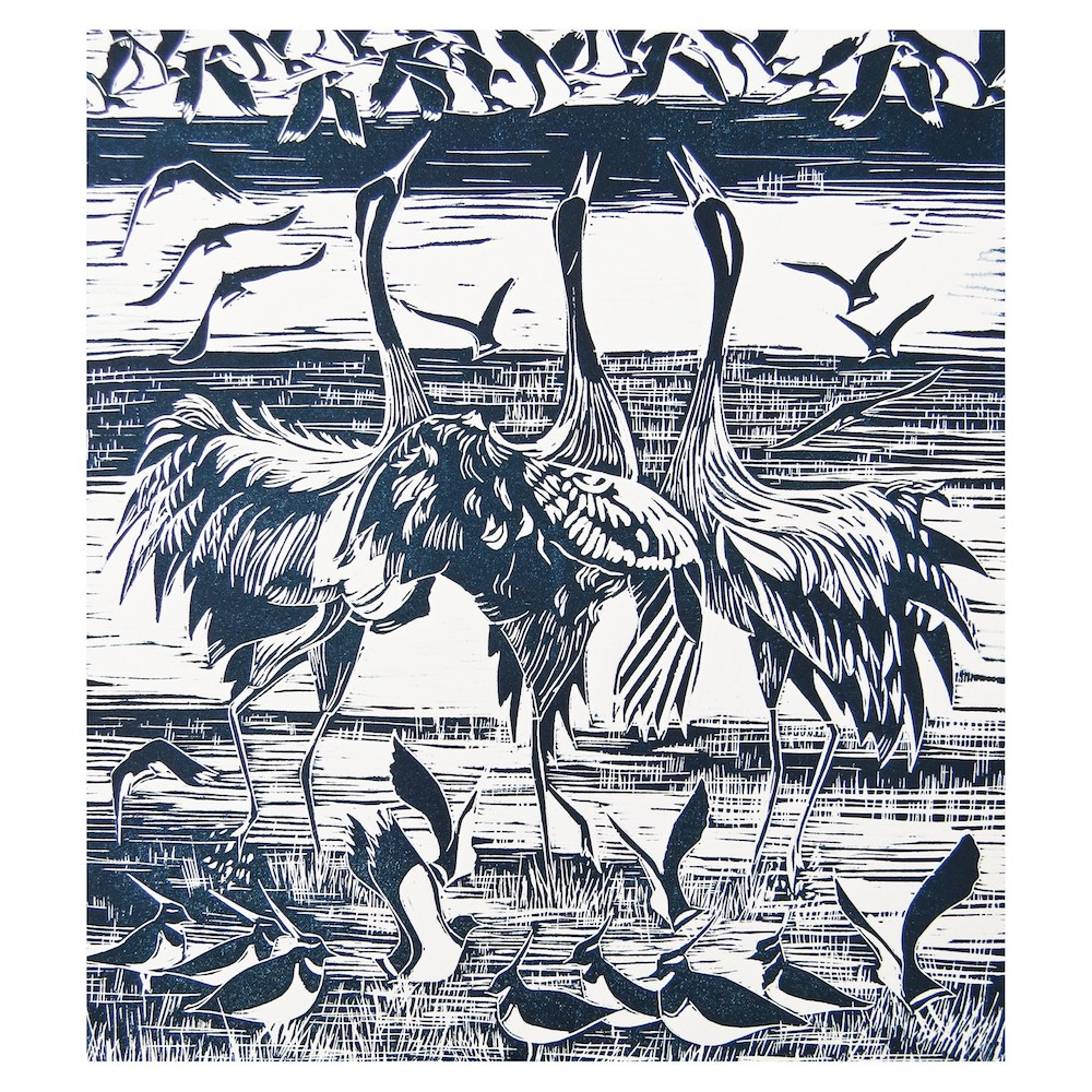 Cranes and Lapwings Jackie Curtis