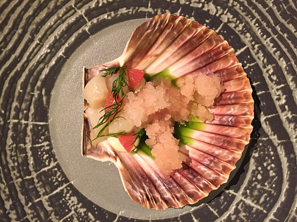 scallops in scallops shell olive tree