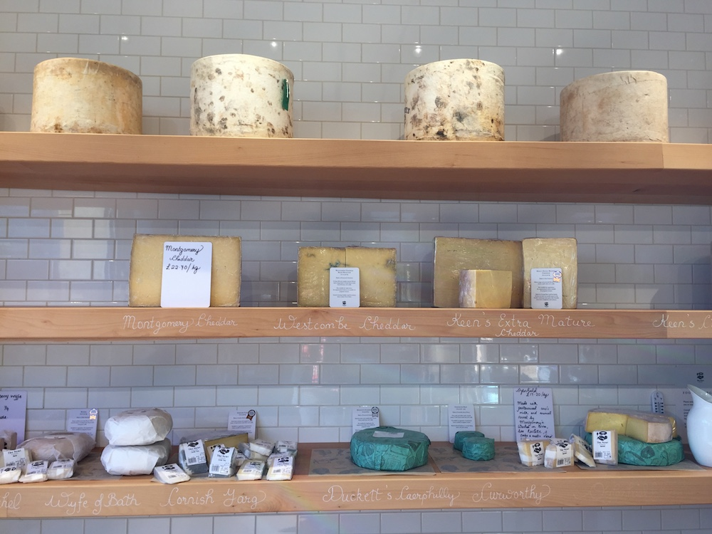 cheese at the newt
